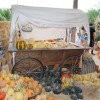 Thumbnail image for Dice Tomatoes: The Annual Fall Harvest Festival at Sharon Lisenbardt's 'The Farm' in Las Vegas, Nevada